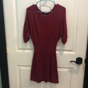 Express mini sweater dress
